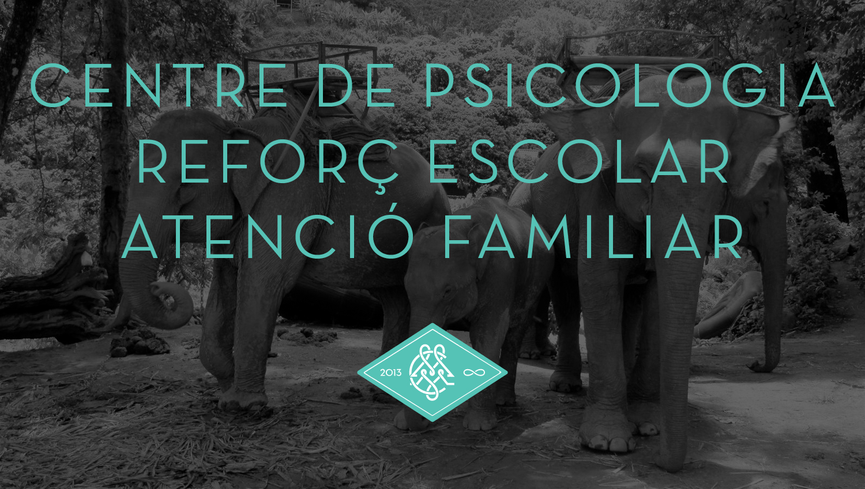 elefantes_web