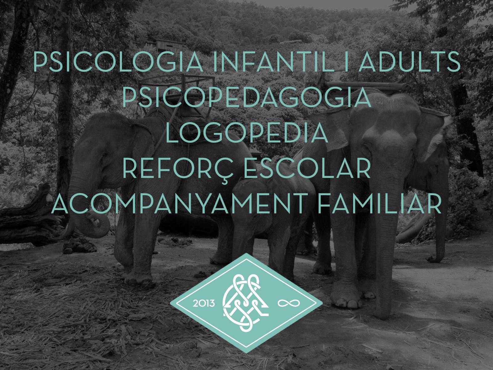 elefantes web 2020